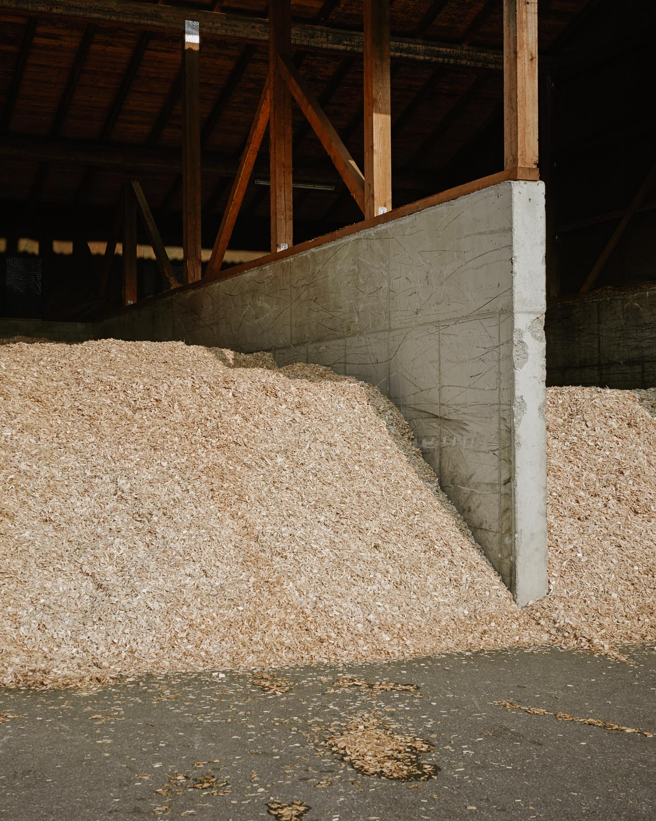 Holzcluster - ECOLOHE AG